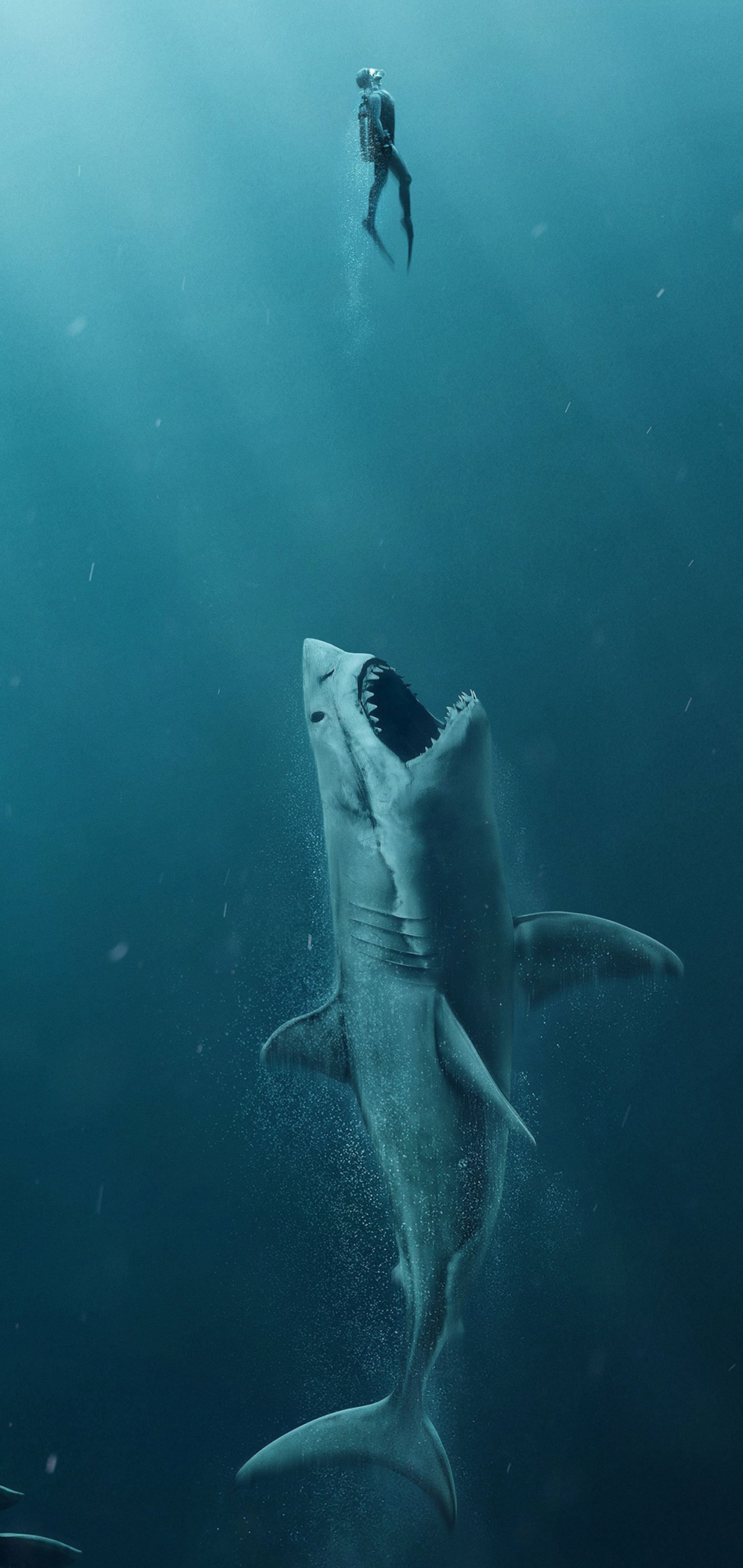 Shark Samsung Galaxy A51 and A71 HD Wallpapers